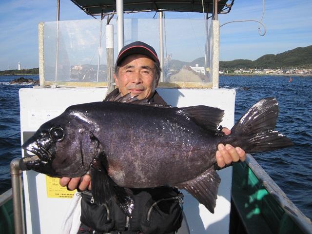 2015.11.29白浜高島65.0cm/5.45kg